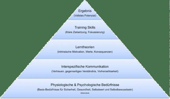 Fundament der wissenschaftlichen Trainingstechnik EBEC