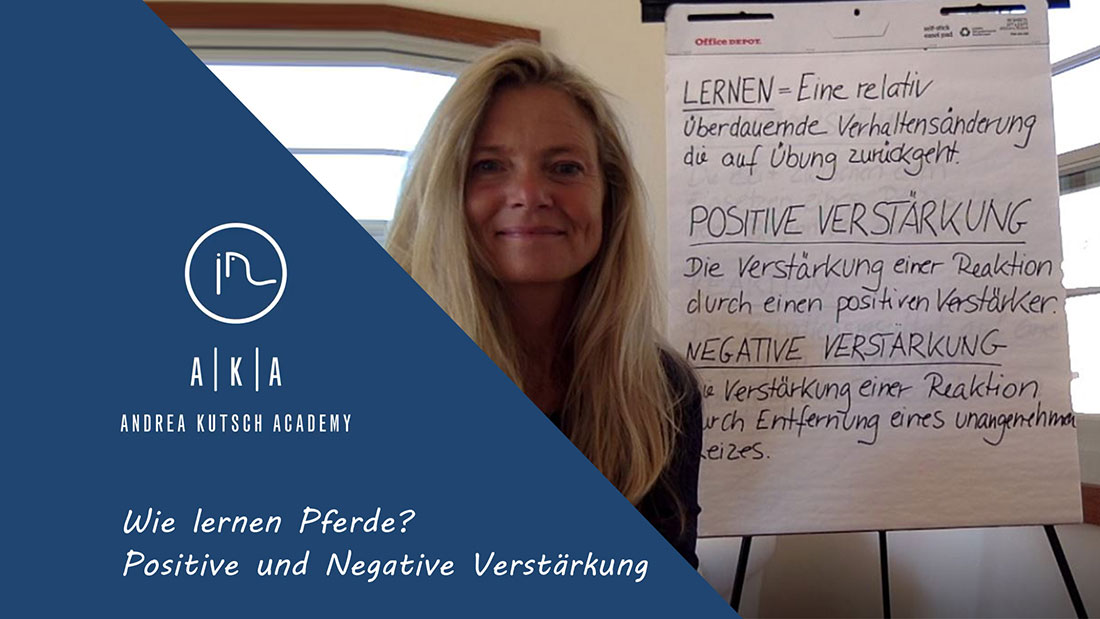 positive und negative verstrkung - Negative Verstarkung Beispiel