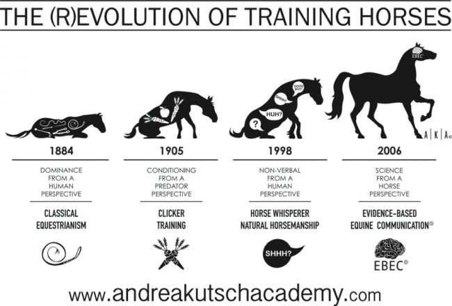 (R)Evolution des Pferdetrainings
