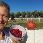 Granatapfel für Pferde: Hübsch verpackte Gesundheit